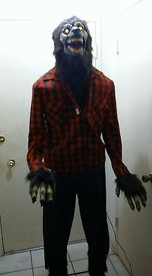 HALLOWEEN PROP ANIMATED LIFESIZE  WEREWOLF. HUGE 6.2 feet tall. Howls, lights.