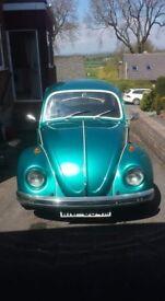 Classic VW Beetle (1973)