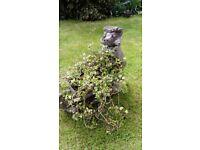 garden planter, badger design very haevy