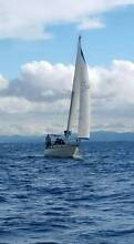 (Chenoa) Kaufman 34ft GRP Masthead Sloop Newport Hobsons Bay Area Preview