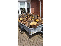 Trailer Load of Unseasoned Hardwood Oak Logs, Delivered Free of Charge, in the Pontypridd Area