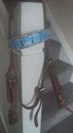 horse and pony bridles