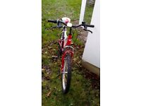 Childrens Woodworm bike 20inch wheels 6 speed