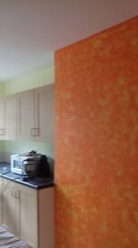 House Renovation: plaster board, Plaster, paint, wall paper, Bathrom Tile, ceramic jobs