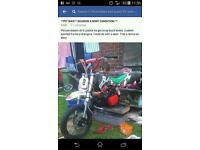 Pit bike deamon X 125 mint condition could do wi a new seat
