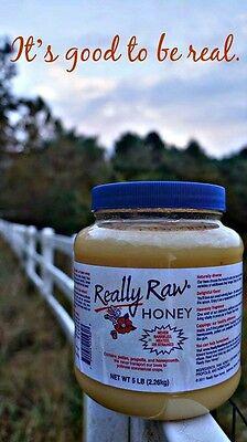 Really Raw Honey  White Gold  5Lb Jar    Organic Youll