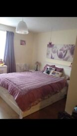 Bedroom furniture (beds, drawers, wardrobes)