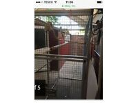Birds/monkey/dogs outdoor cage