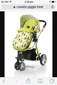Looking for this pushchair