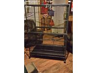 Large cage on wheels stainless black steel