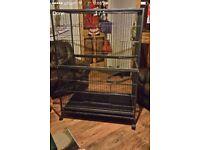 Cage suitable for birds,parrots,budgies,ferrets,chinchillas,