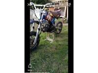 custom pit bike 110 stomp engine
