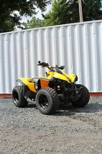 Can-Am Renegade 500HO