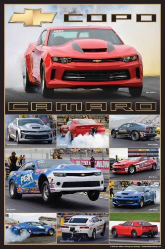 """Chevrolet COPO Camaro Stock/Super Stock NHRA 20"""" x 30"""" Drag Race Poster."""