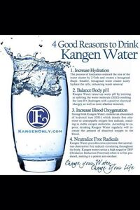 Enagic Kangen Water Ironizing System- London London Ontario image 2