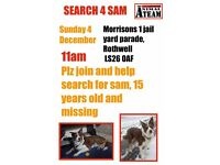 Help Find Sam... Sam is a brown and white border collie,
