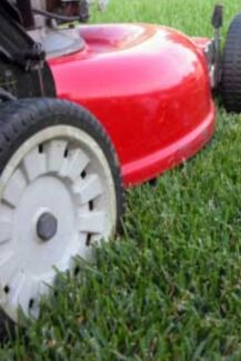 CHEAP MOWING AND MAINTENANCE Murwillumbah Tweed Heads Area Preview