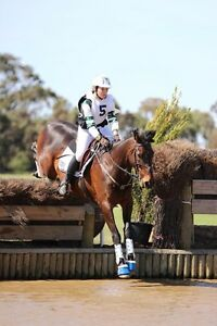 Horse Riding Instructor/Coach Rosanna Banyule Area Preview