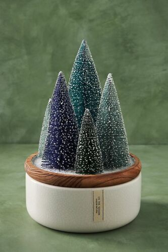 NWT Anthropologie Frosted Bottle Brush Large Candle