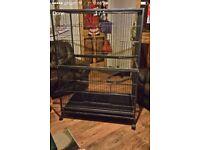 Large black steel cage suitable for birds, parrots, ferrets, chinchillas etc..