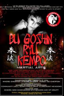 Martial arts Mount Druitt Blacktown Area Preview