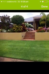 Lawns,hedges,trees cut,Rubbish removed Cheap!  Forestdale Logan Area Preview