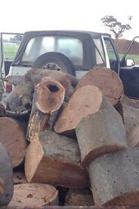 Fire wood Ascot Bendigo City Preview