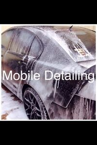 Mobile car detailer Guildford Parramatta Area Preview