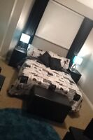 Room available in nice spacious house! Right near college