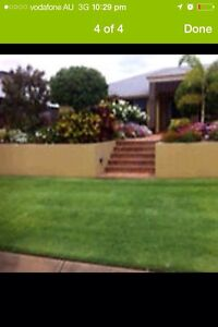 Does your town house need some Garden work Cheap!  Balmoral Brisbane South East Preview