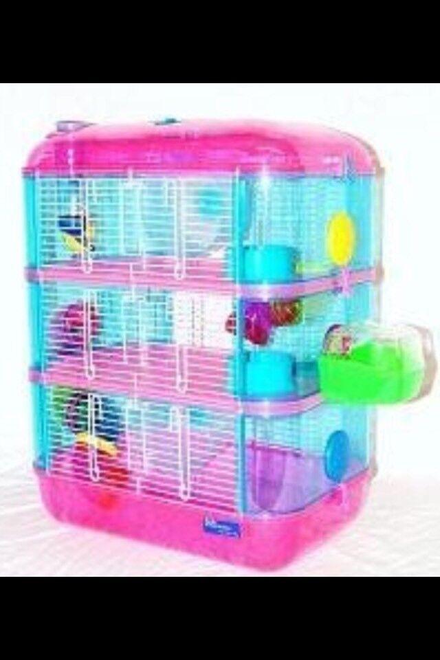 Hamster cage + hamster