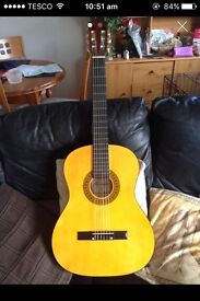 Herald hl44 guitar