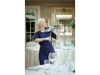 Wedding music-Violinist: Ceremonies, wedding meals, Drinks reception music