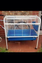 Rabbit Hutch large North Adelaide Adelaide City Preview