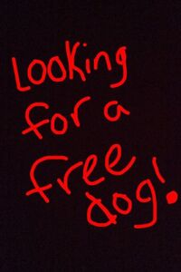 Looking for a free dog