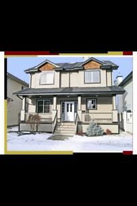 Two storey house in Terwillegar towne for rent