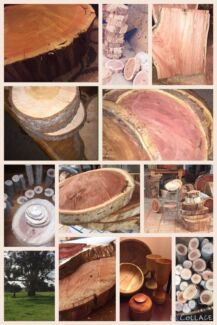 Wood rounds, slabs, stumps, logs - cut to size RED GUM & other Craigmore Playford Area Preview