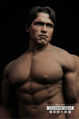 1 6 Phicen Custom Figure Arnold Schwarzenegger The Terminator Super Strong
