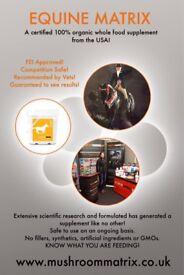 Horse Supplements 100% Organic Mushrooms