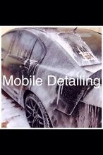 MOBILE CAR DETAILING Regents Park Auburn Area Preview