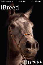 Horse breeding app Bairnsdale East Gippsland Preview