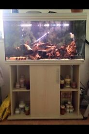 Fish tank and stand with full set up ready to go with L NUMBER plecs