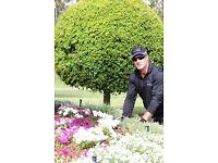 Express Gardening Services Business