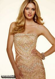 Paparazzi prom dress size 8-10