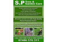 TREE SERVICE CALL TODAY FREE QUOTE ‭‬07486576311