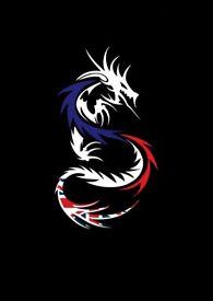 Dragons Academy Eckington - Martial arts & more
