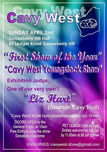 CAVY WEST Inc - GUINEA PIG - YOUNG STOCK SHOW Brookton Brookton Area Preview