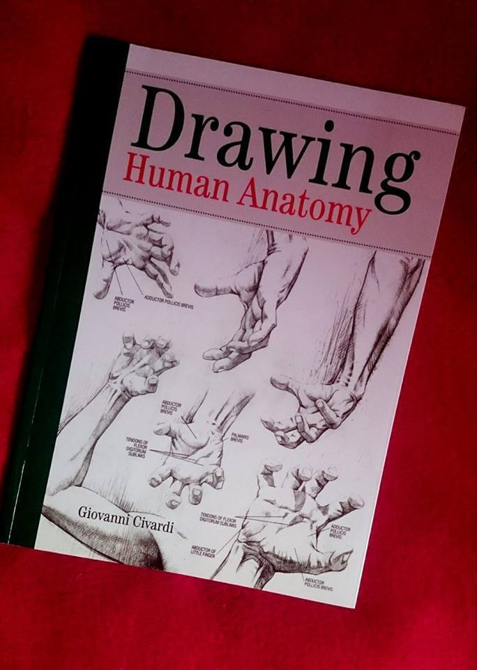 Drawing Human Anatomy By Giovanni Civardi How To Draw Book In