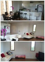 Chatswood large and sunny luxury apartment room for rent!!! Strathfield Strathfield Area Preview