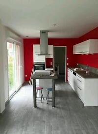 Painter & decorator french professional